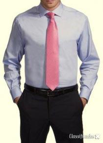 Executivo procura secretária nova