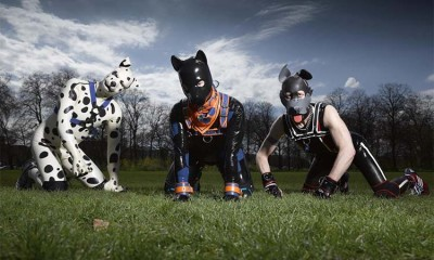 Os Cães-Humanos