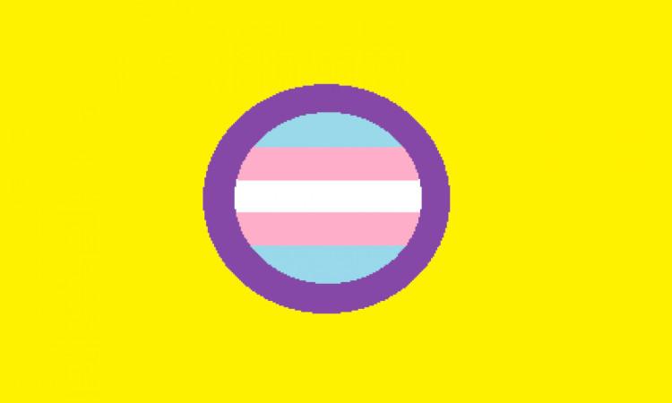 Conheça a nova Lei de autodeterminação da identidade de género
