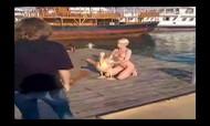 O que acontece quando uma russa nua e um pelicano se juntam...