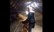 Casal apanhado a fazer sexo no metro... com bebé ao colo!