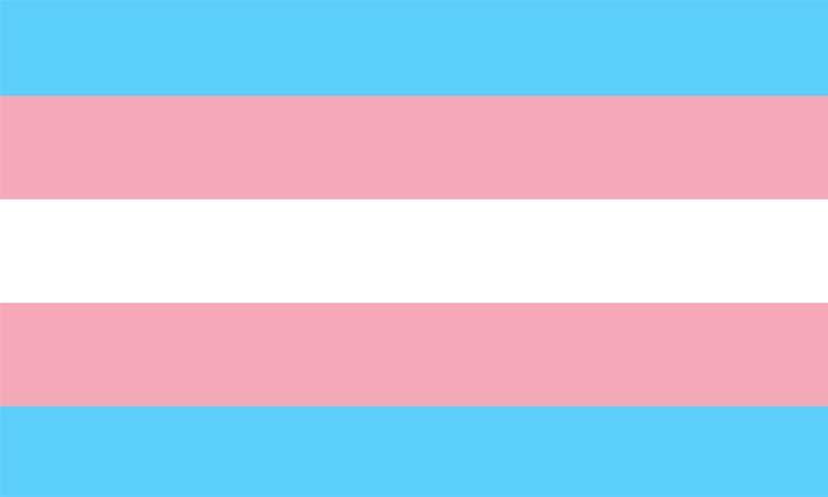 Dia Internacional da Visibilidade Transgénero